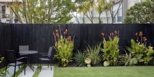 Backyard - San Francisco Landscaping