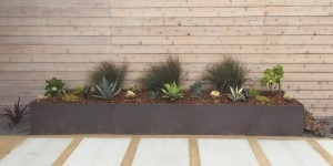 Patio Landscaping - San Francisco